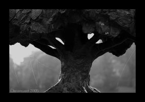 Tree in the fog by DreamSand
