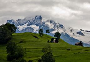 Gathering Storm - Grimmewald by themobius