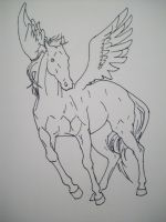 Pegasus Lineart- Stock by ComatosePrincess
