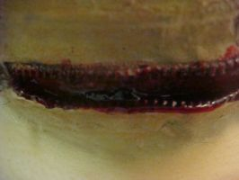 Slit throat close up by TheSpazOutLoud