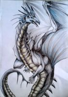 The Dragon by himanshu-kapoor