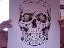 Skull by Catinmyhat