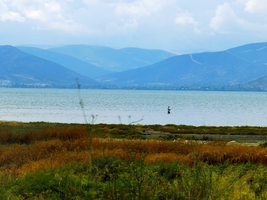 Greece -13- : Fisherman at Nafplio by IoannisCleary