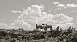 'The Wild, Wild, West' by Jphotography-LUV