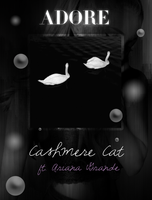 Cashmere Cat - Adore (feat. Ariana Grande) by iFocusOnMe
