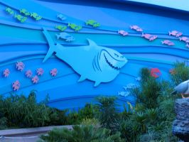 Bruce from Nemo Living Seas by WDWParksGal-Stock