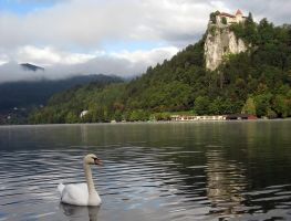Lake Bled, Slovenia by NivlacNZ