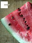 :: water-melon by moiraproject