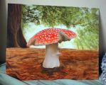 Amanita Muscaria by WithinItAll