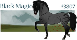 #3807 Black Magic by JC-Nordanner