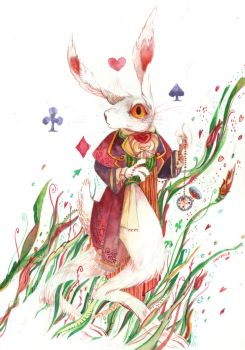white rabbit by faQy