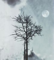 Dumbness of my sorrow tree by NataliaDrepina