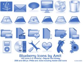 Blueberry Icons by amitsaraf32