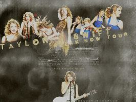 speak now tourrrrrrrr by AshleyJoker