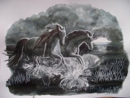 Horses running through water by IgrenIllustration