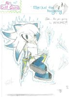 Maikel The Hedgehog-Project Blade Storm by CrIlAuRa