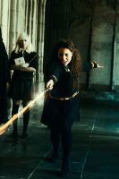 Never Insult a Hufflepuff by Vanne