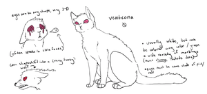 Ventsona Ref by purrcatory