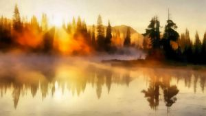 Sunrays in a Fog by WictimCZ
