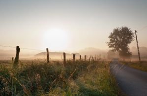 sunny road by BartDeburgh