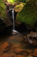 Waterfall delights by pankajz