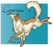 Copernica by tailfeather