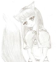 Spice and Wolf by Yume-no-Kamila