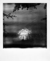 Polaroid 255 - spill by Picture-Bandit