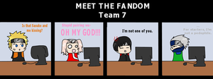 Meet The Fandom: Team Seven. by tanuki-kage