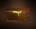 Video Player by BlakeCeeno