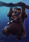 1.4 - Wookie (1hr. 25) by Cryptid-Creations