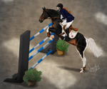 Ackerley EC Three Day Event: Showjumping by Sazyce