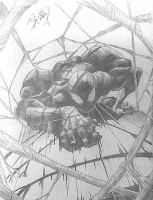 Superior Spider-Man by DeVianThaI