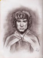 Frodo caricature by Lorredelious