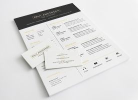 This is one of the best Resume Templates I've seen by bestiutzaiscool