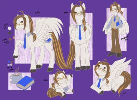 Liam - Show pony reference by SinistrosePhosphate