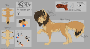 Kota Ref Dec. 2013 by iKodi