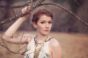 Soft Branches by FDLphoto