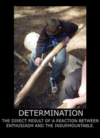 Determination Motivational by Feanor-the-Dragon