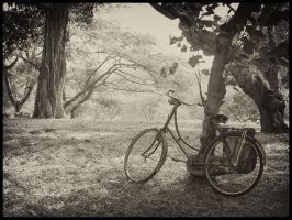 Old bicycle by colorfulinvention