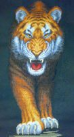 Tiger. Cross Stitch by ouraion