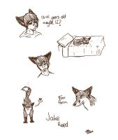 Jake by wolf--eyes