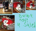 Balto plush for sale, Must go!!!! by TwinTowergal