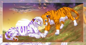 cuddling tigers by pharao-girl