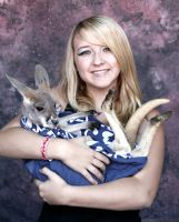 Holding A Joey by KahlaWolf