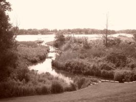 Waters Way Sepia by jammin2music44