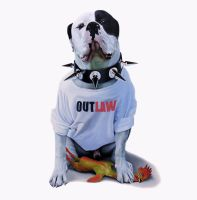 Outlaw by ENID-BLAYTANT
