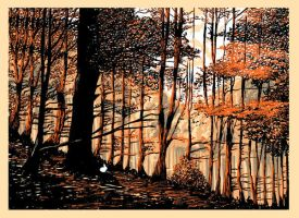 Forest by gafana
