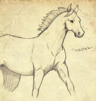 Horse Holstein by PituSilver