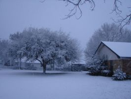 Snow in Texas by Sarlaw